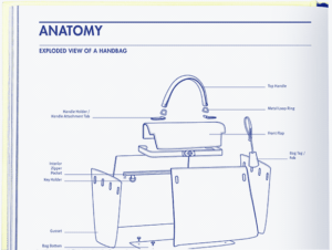 Anatomy of a handbag